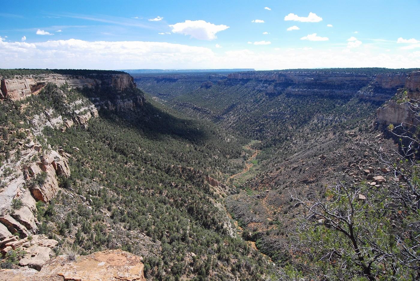 Mesa Verde est entrecoupée de plusieurs vallées et les Anasazis y vécurent plusieurs siècles.