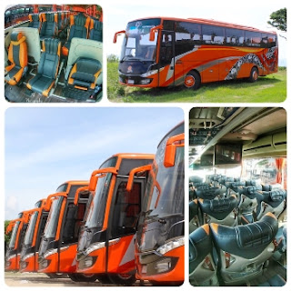 Rental Bus Tangerang, Rental Bus Di Tangerang