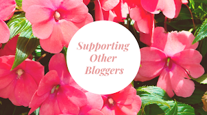 Supporting Other Bloggers