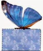 Free Printable Boxes with Realistic Butterfly Shape Closure in Blue.