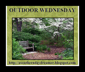 http://asoutherndaydreamer.blogspot.ca/search/label/Outdoor%20Wednesday