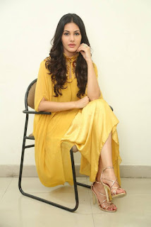 Amyra Dastur In Yellow Dress At Manasuku Nachindi Movie Interview (1)