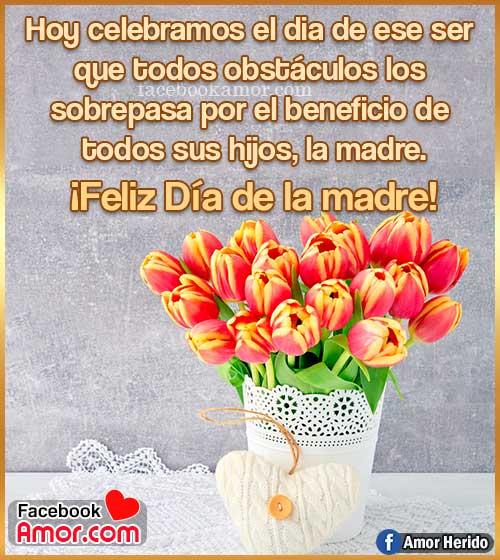 flores de tulipanes para mamá