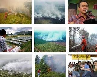 photo gambar kebakaran lahan gambut di Bengkalis Riau