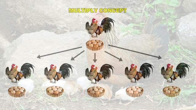 Ayam Kampung LPK 1ef130e4413a