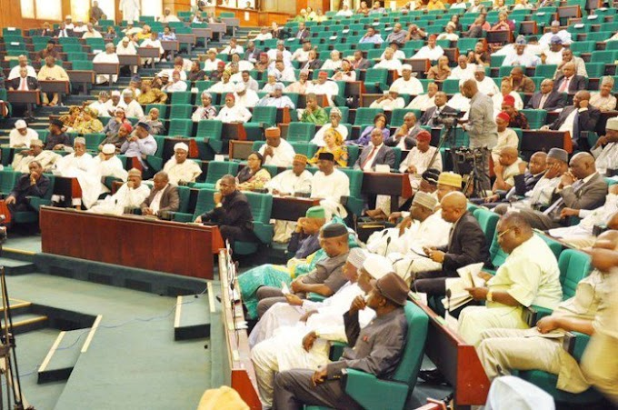 Stop to privatization of national assets  now - Rep warns  ...accuse FG of impunity