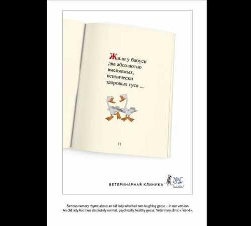 Печатная реклама ветеринарной клиники