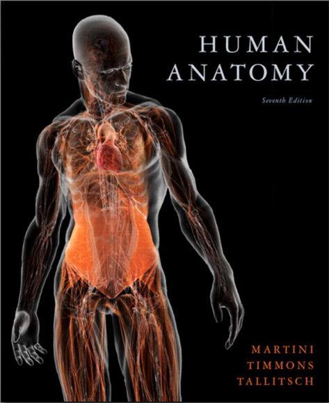 Human Anatomy 7th Edition [PDF]- Pearson-Martini