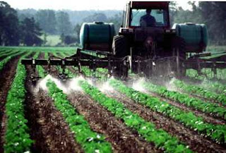 Pesticides Being Sprayed on Food Crops