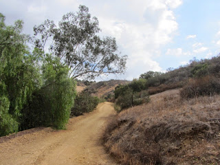 Heading south on Alosta Canyon Trail, South Hills Wilderness Park, Glendora
