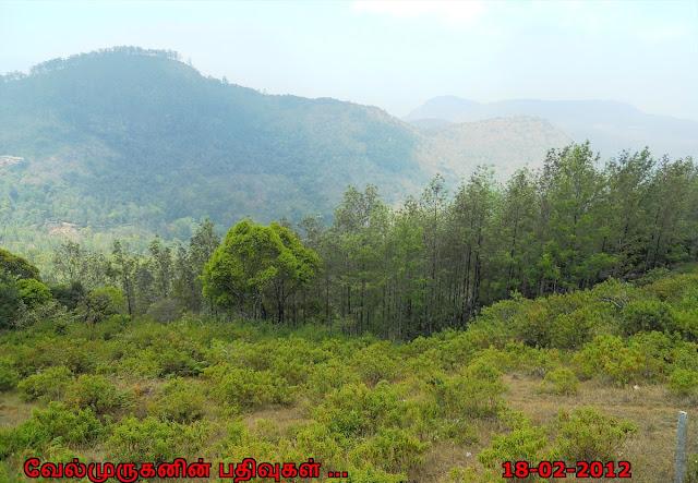 Yercaud Shervaroyan hill