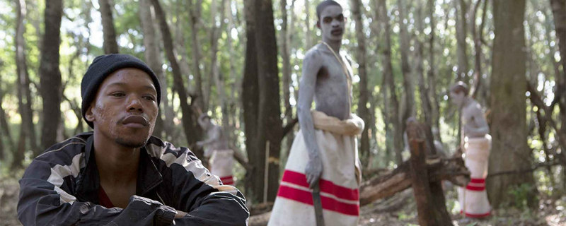the wound film