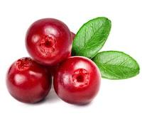 Gambar buah Cranberry