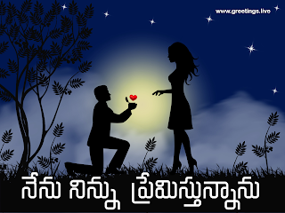 "I love you in Telugu words "" NENU NINNU PREMISTHUNNANU """