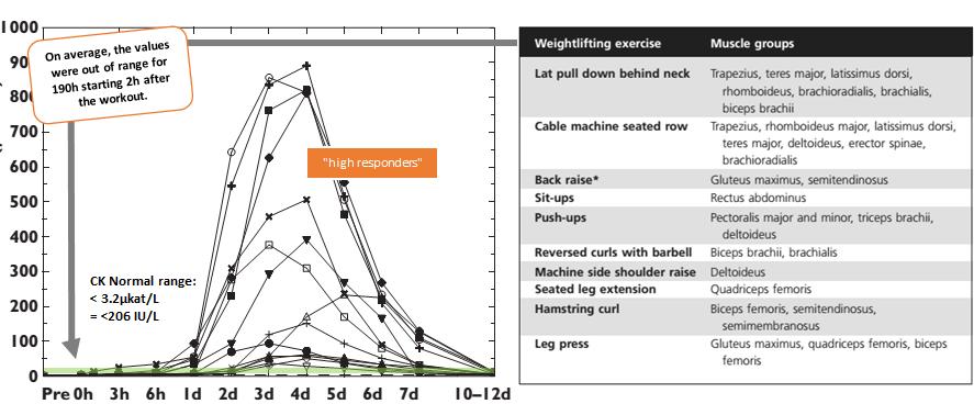 Rhabdo & Liver Failure or Just an Intense Leg-Workout