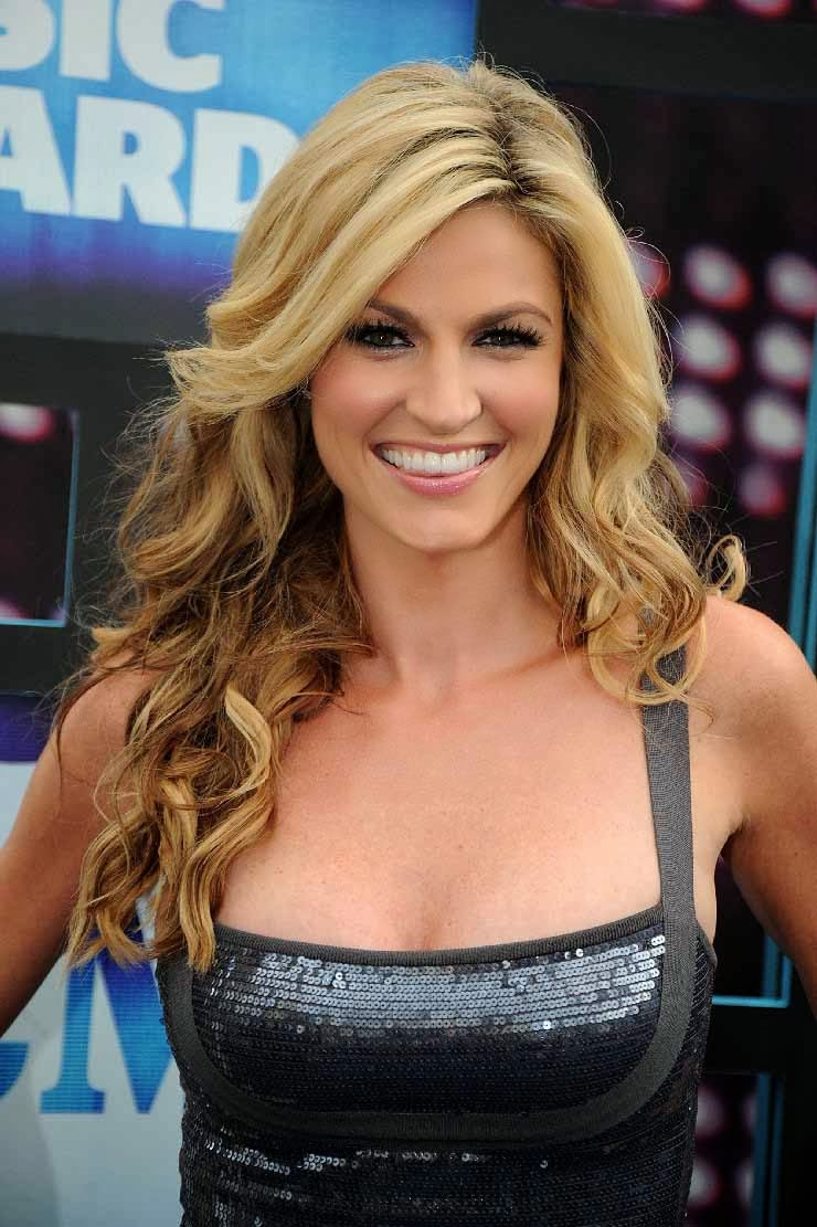 HD Wallpapers: Erin Andrews Pictures
