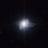 Star IRAS 19475+3119