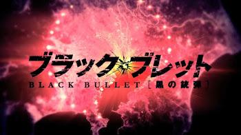 Black Bullet | Sub. Español | 720p MEGA