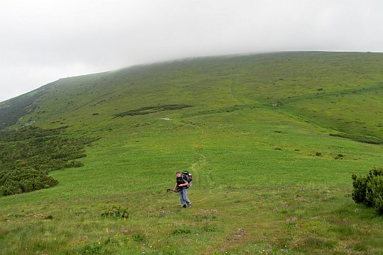 Podejście na szczyt Królewskiej Hali (słow. Kráľova hoľa, węg. Király-hegy, niem. Königsberg).