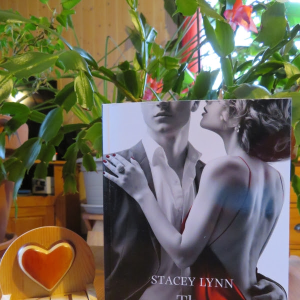 The affair, tome 3 : Obsession de Stacey Lynn