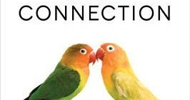 our human heritage courtship and mating In an intimate act that scientists call wire-wipe display, during courtship the male twelve-wired bird of paradise repeatedly brushes the female's face with the dozen stiff feather shafts protruding from his i'm an associate editor at ngm, where i write and edit stories for both our print and digital editions.