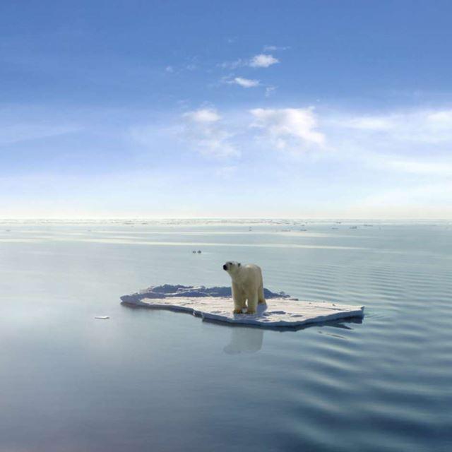 Acordo climático de Paris entra em vigor