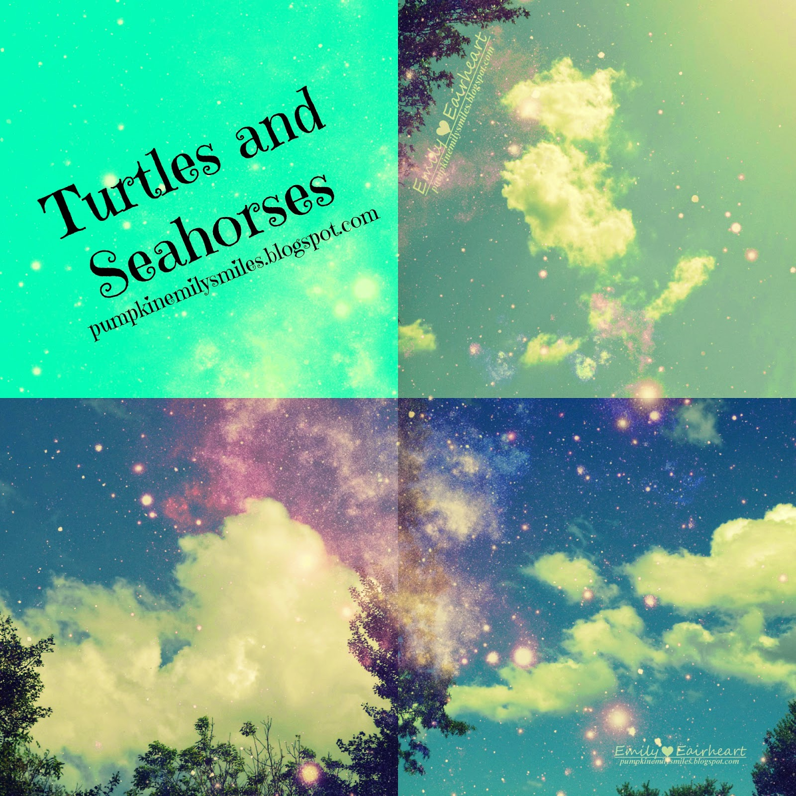 Turtles and Seahorses