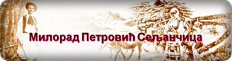 Milorad Petrovic Seljancica