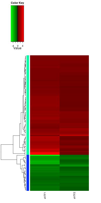 Diving into Genetics and Genomics: log2 fold gene expression