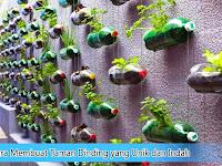Cara Membuat Taman Dinding yang Unik dan Indah