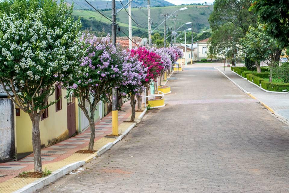 Efeito da foto avenida brasil 3