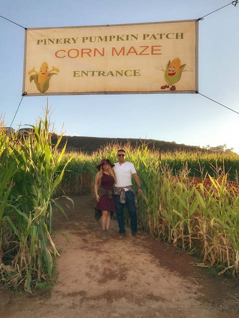 Fun Fall Corn Maze in San Diego