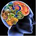 أطعمة تُحسّن الذاكرة