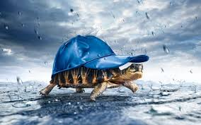 images for rainy day