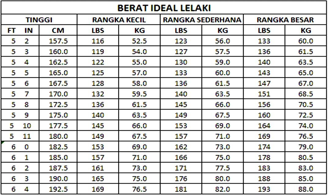 Load Cell dan Timbangan