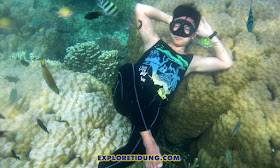 wisata snorkeling di Pulau Tidung