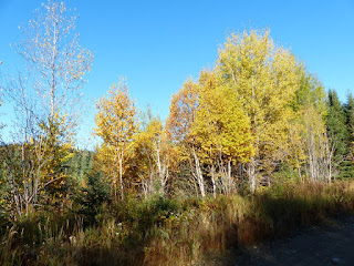 Les couleurs de l'automne au Québec