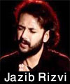 http://www.humaliwalayazadar.com/2017/01/jazib-rizvi-nohay-2016-to-2018.html