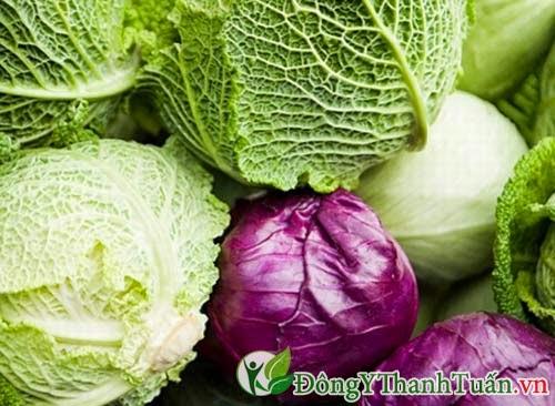 Bắp cải là thảo dược chữa bệnh viêm dạ dày