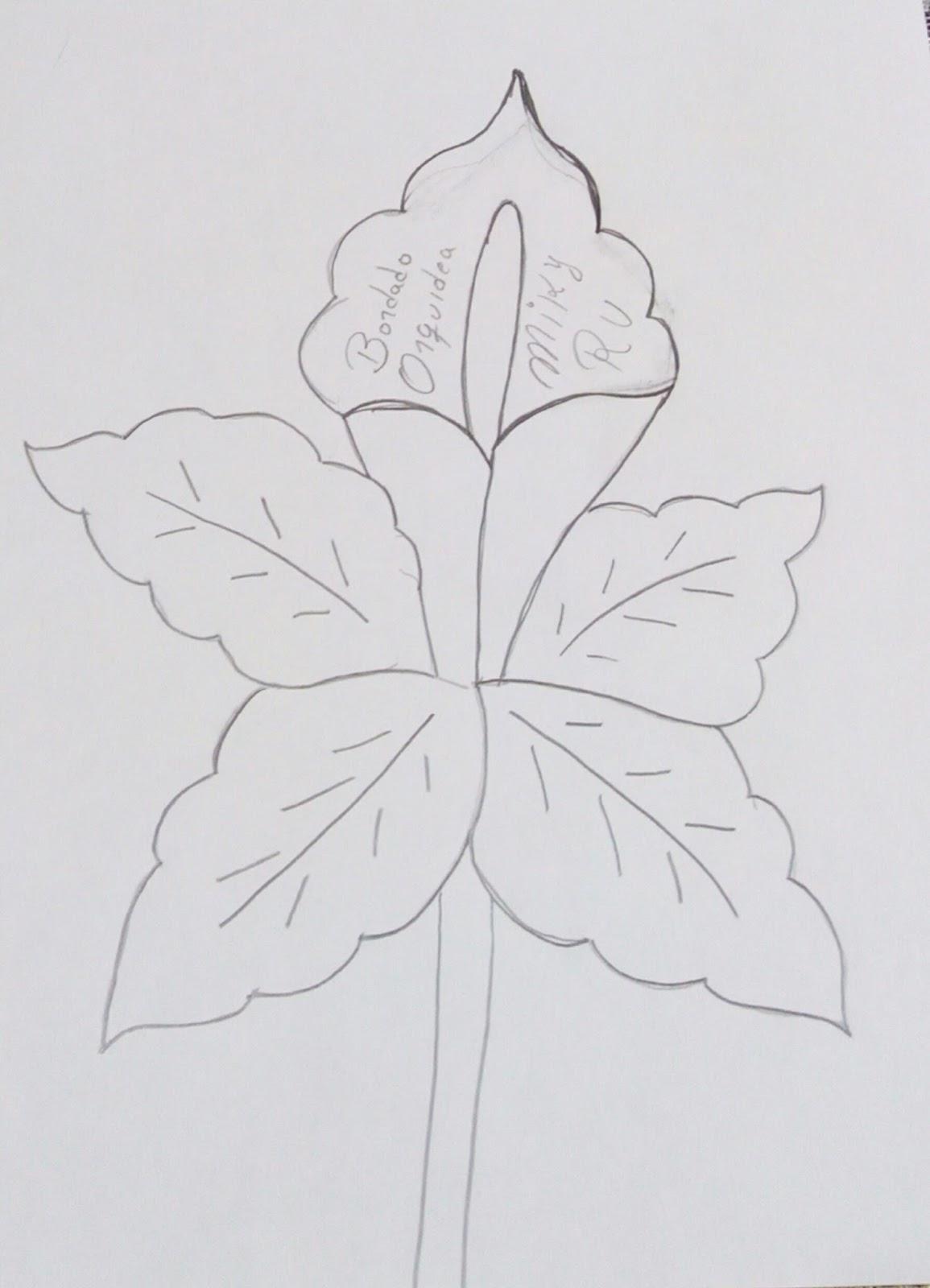 Orquideas Dibujo - Get Yasabe