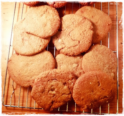 fat-free-ginger-cookies