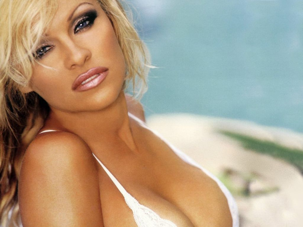 Pamela Anderson Hot Pictures, Photo Gallery  Wallpapers -3581