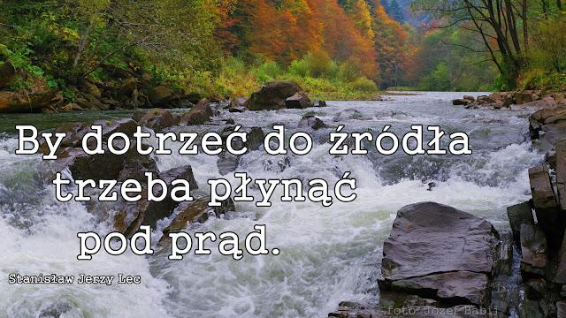 https://fotobabij.blogspot.com/2018/02/by-dotrzec-do-zroda-trzeba-pynac-pod.html