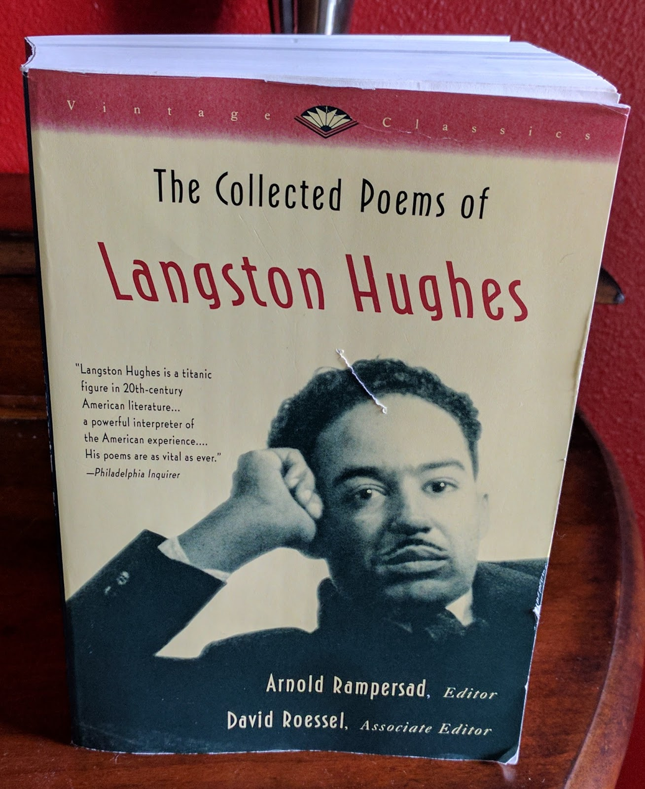 literary critique of langston hughes Langston hughes james langston hughes was born february 1, 1902, in joplin, missouri his parents divorced when he was a small child he was raised by his grandmother until he was thirteen, then moved with his mother to cleveland, ohio.