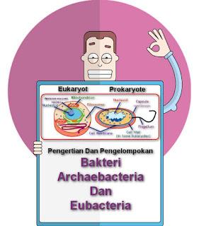 Pengertian Dan Pengelompokan Bakteri Archaebacteria Dan Eubacteria