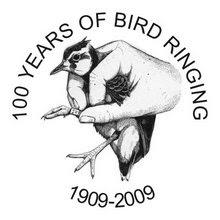 We Bird North Wales