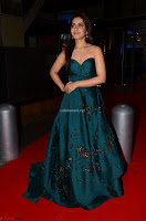 Raashi Khanna in Dark Green Sleeveless Strapless Deep neck Gown at 64th Jio Filmfare Awards South ~  Exclusive 048.JPG