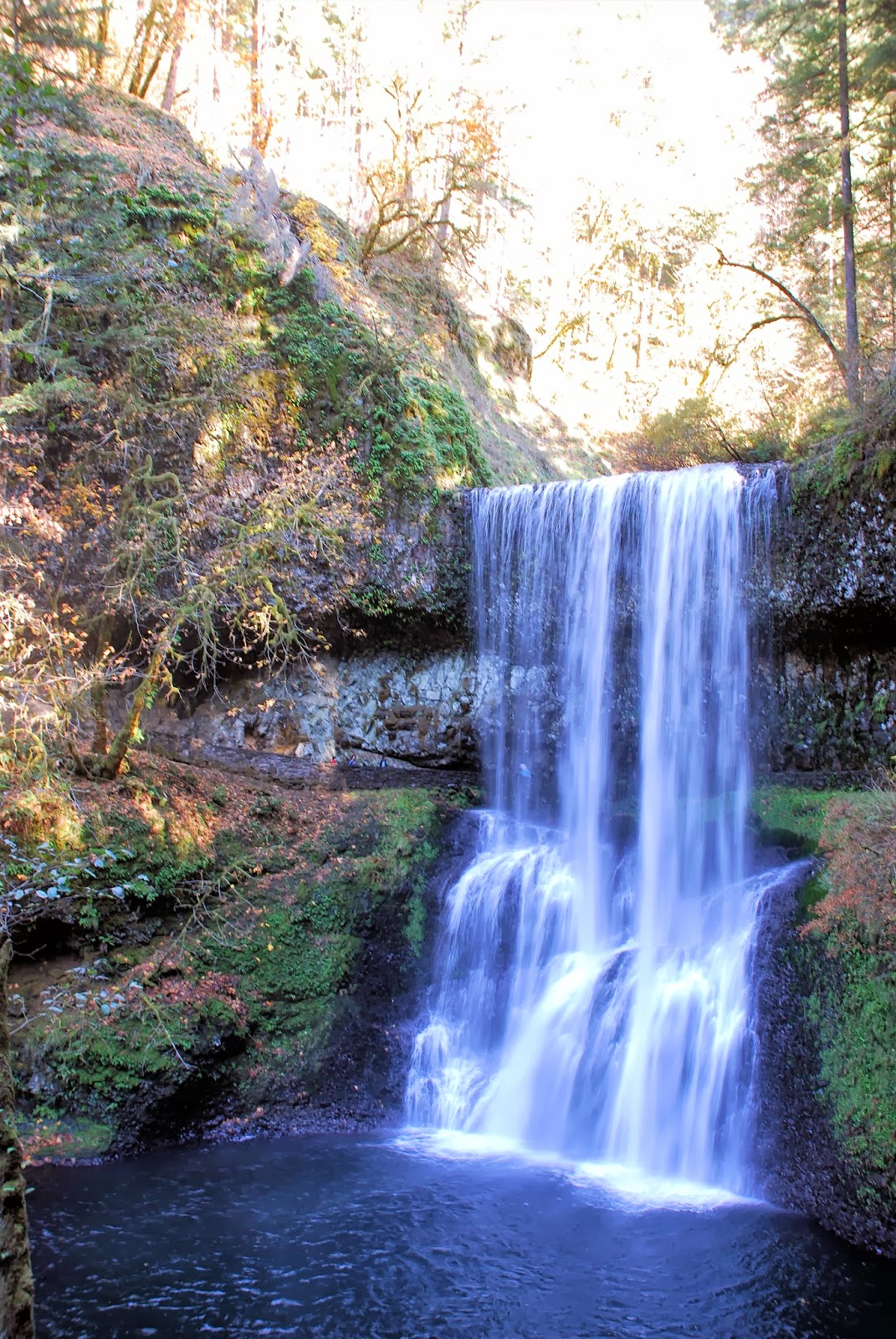 how to get to cliff falls maple ridge