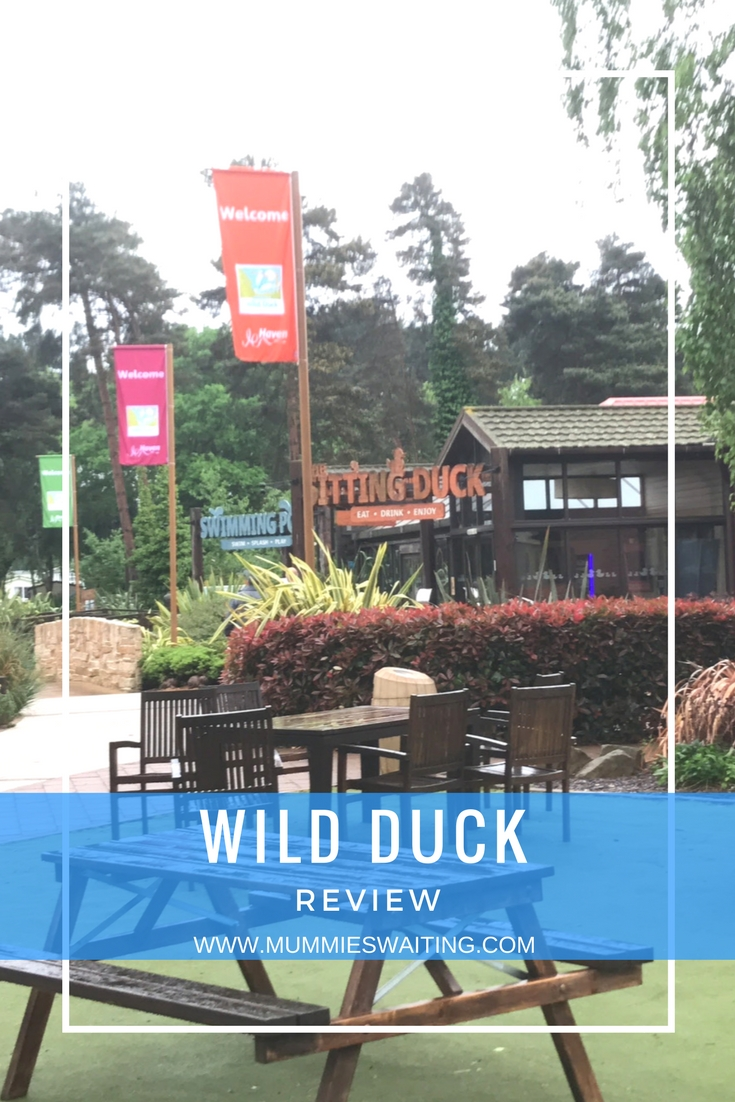 Haven Wild Duck