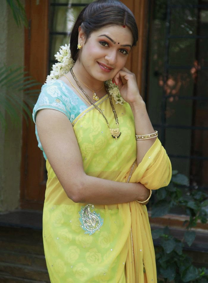 Aditi Agarwal Hot Photos In Yellow Saree